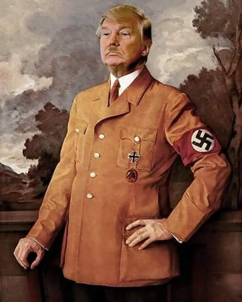 Image result for trump-hitler